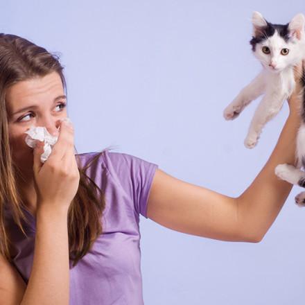 Teste Alérgico